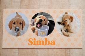 Alfombras vinílicas personalizadas para mascotas
