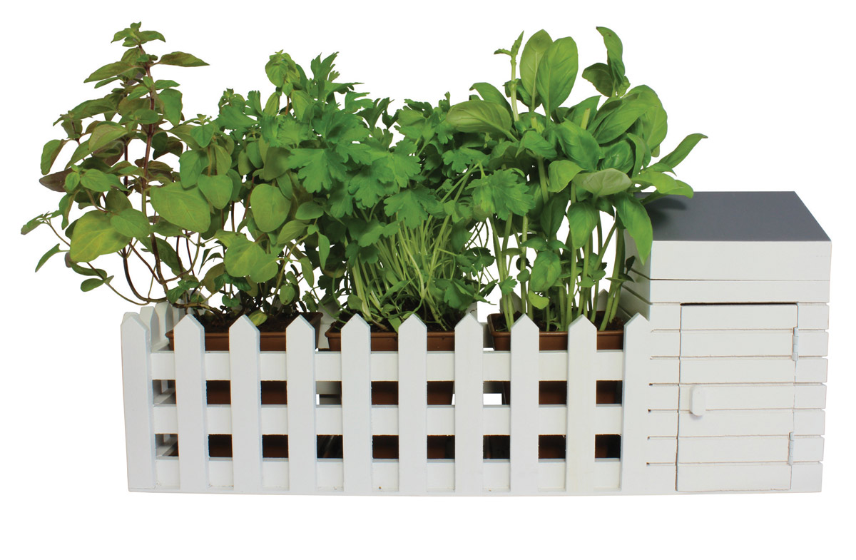 Kit para sembrar plantas arom ticas - Plantar plantas aromaticas ...