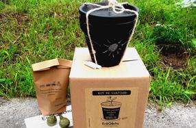 Kit Maceta de Pizarra para cultivo de albahaca y perejil