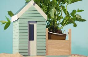Kit para sembrar plantas aromáticas