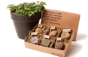 Bombas de semillas para cultivar plantas aromáticas
